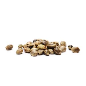 8 Free Cannabis Seeds