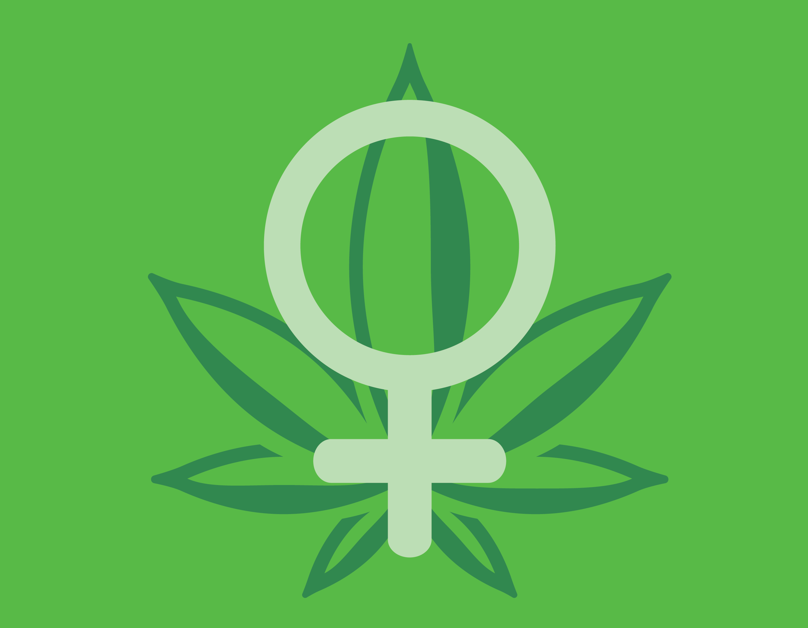 woman cannabis marijuana consume tastes preferences royal queen seeds favorite