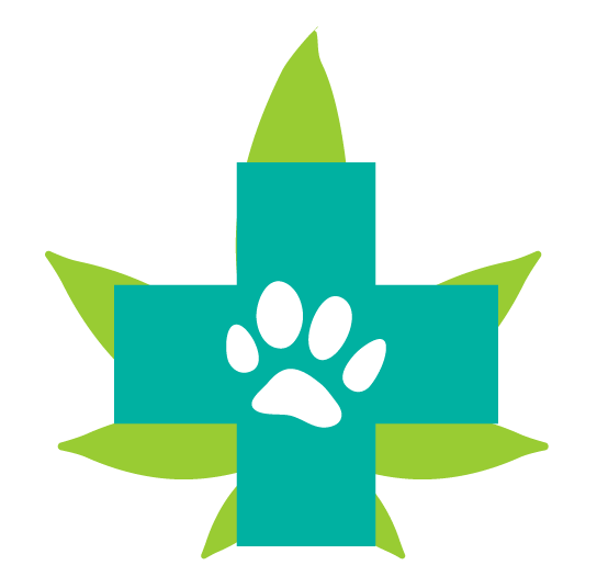 cannabinoids endocannabinoid system pets dogs anxiety fireworks