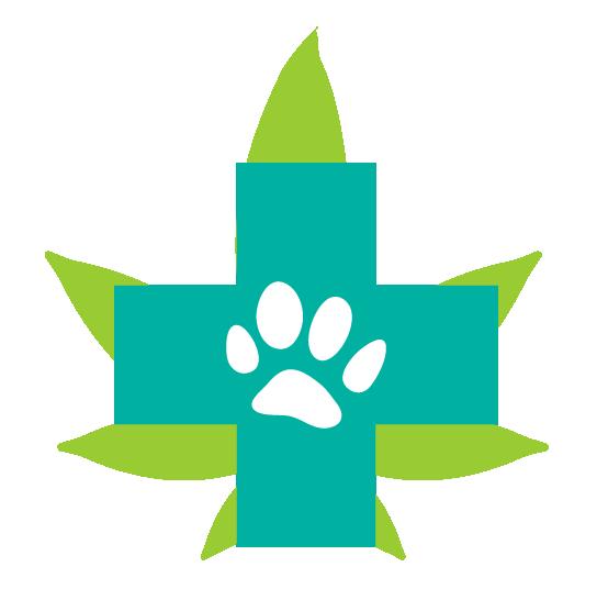 Cannabinoide Endocannabinoid System Haustiere Hunde Angst Feuerwerk