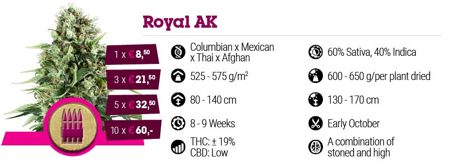 Royal AK