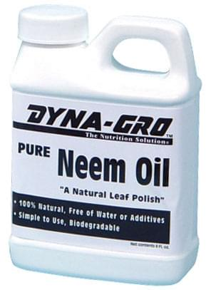 neem oil cannabis