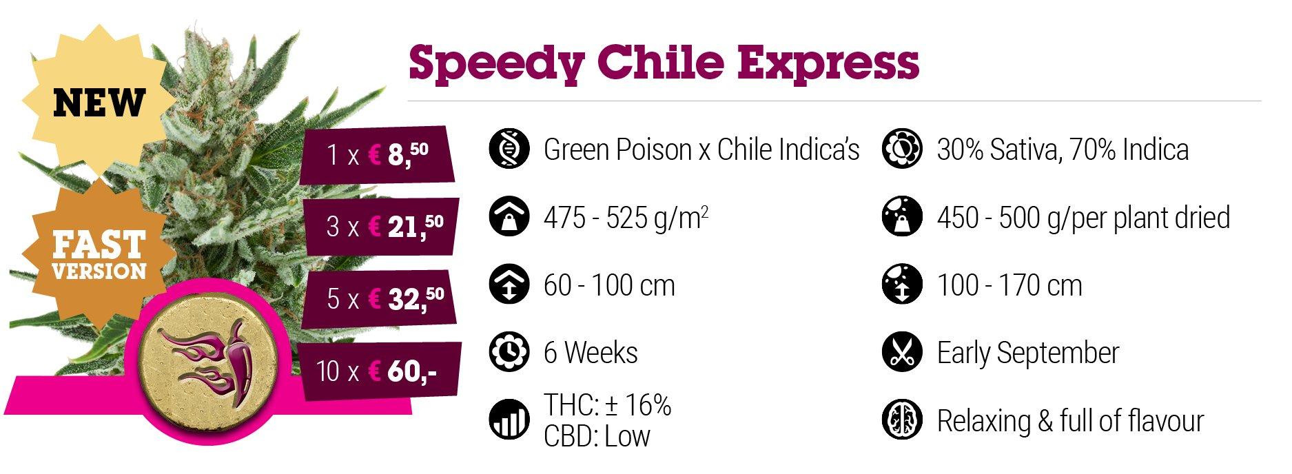 Speedy Chile