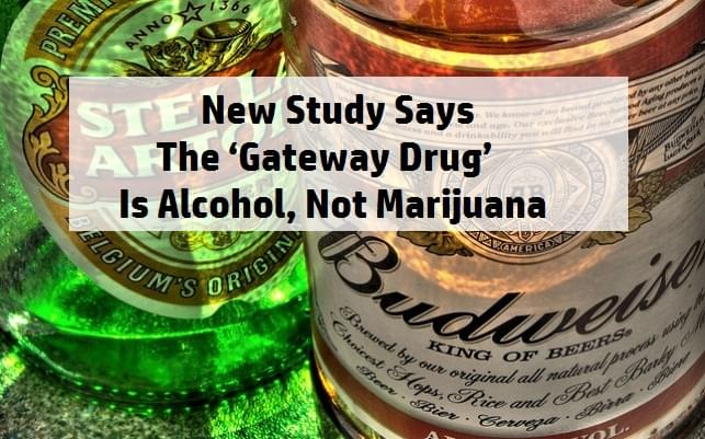 alcohol is a gateway drug
