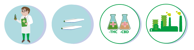 Australia and medical cannabis