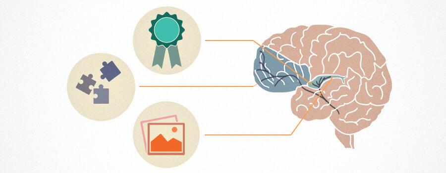 Addiction and Brain