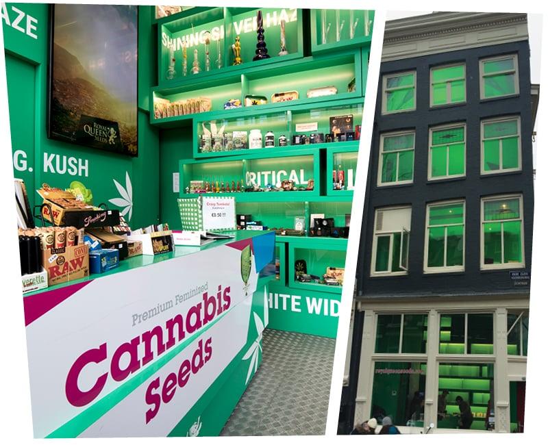 cannabis seeds amsterdam shop