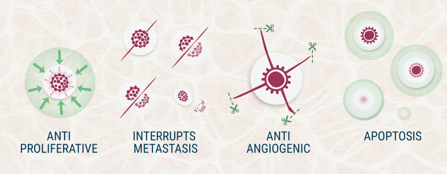 AntiProliferative, Interrupts Metastasis, Apotosis Cannabis