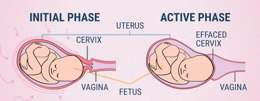 Uterine Contractions And CBD