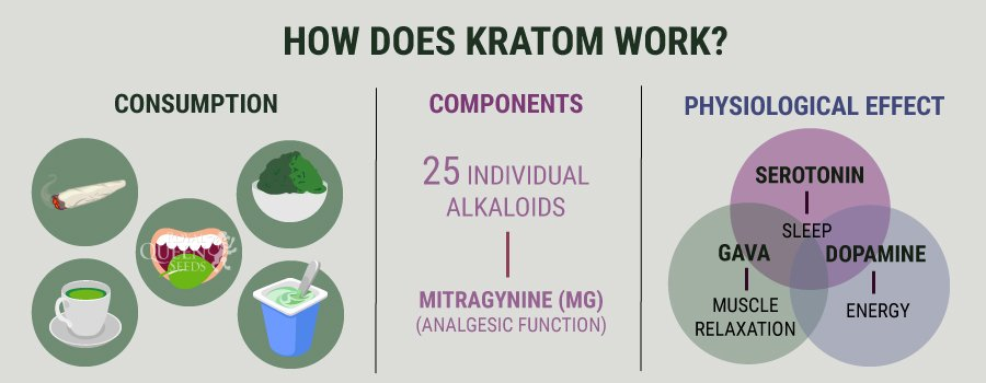 How Kraftom Work