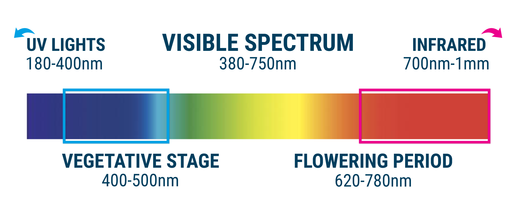 Light Spectrum Raise THC Levels