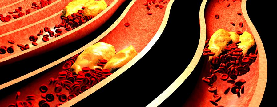 heart cells blood pressure