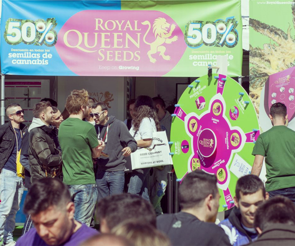 spannabis stand royal queen seeds