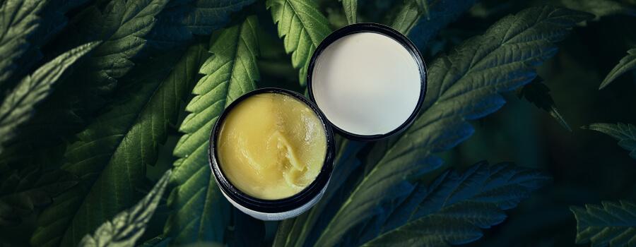 Cream Cannabis