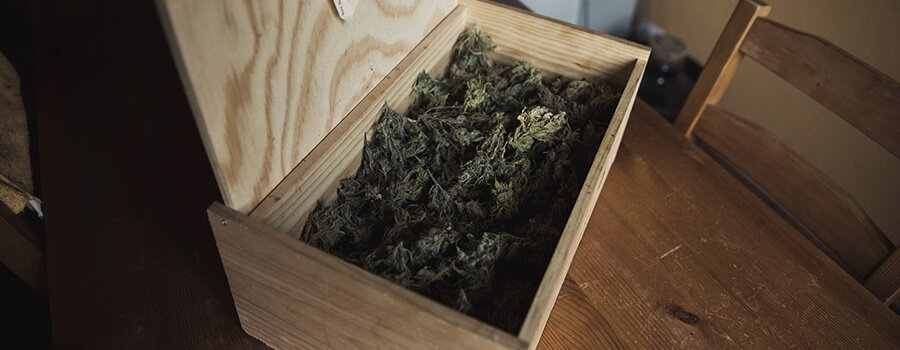 Storing Properly Your Cannabis