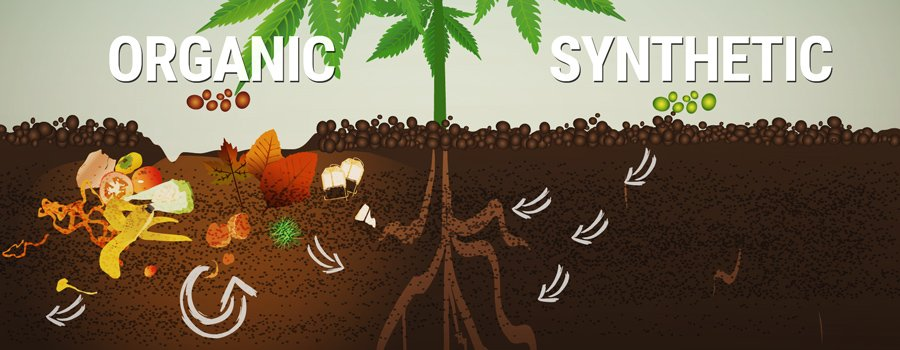 Organic Vs Synthetic Fertilizers