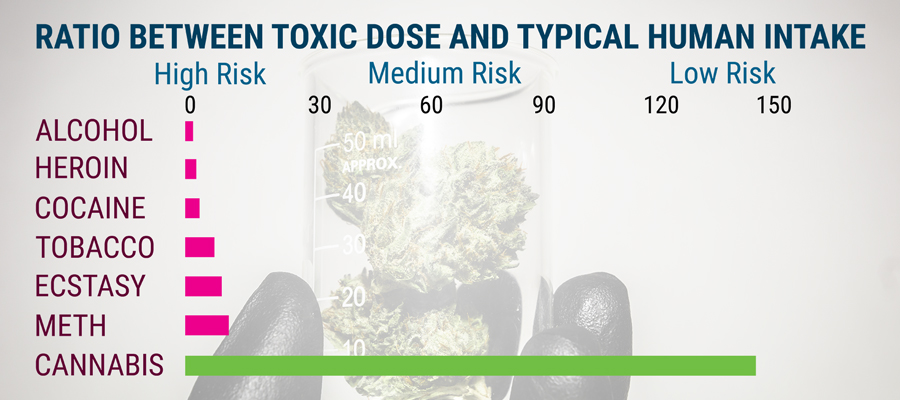 Science cannabis study toxicity
