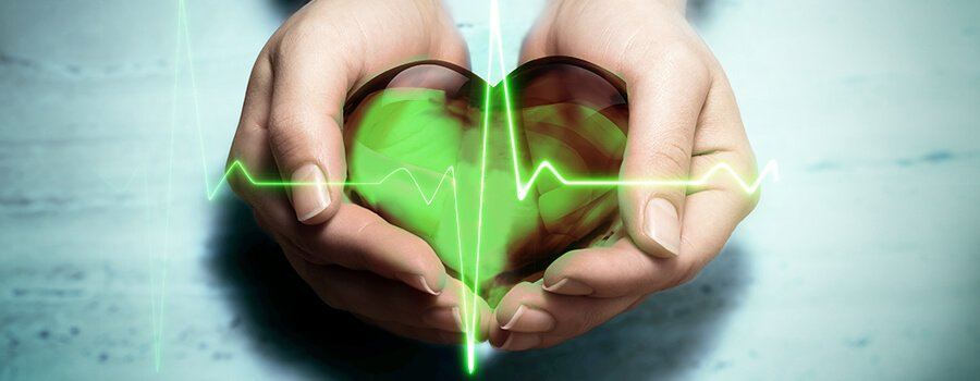Heart Hypertension Cannabis