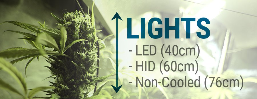 led, HID and non-cooler lights cannabis cultivation