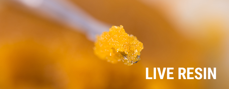 Live Resin Cannabis Extracts