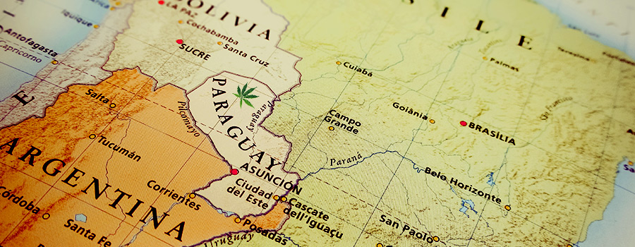 Paraguay South America Cannabis Legislation