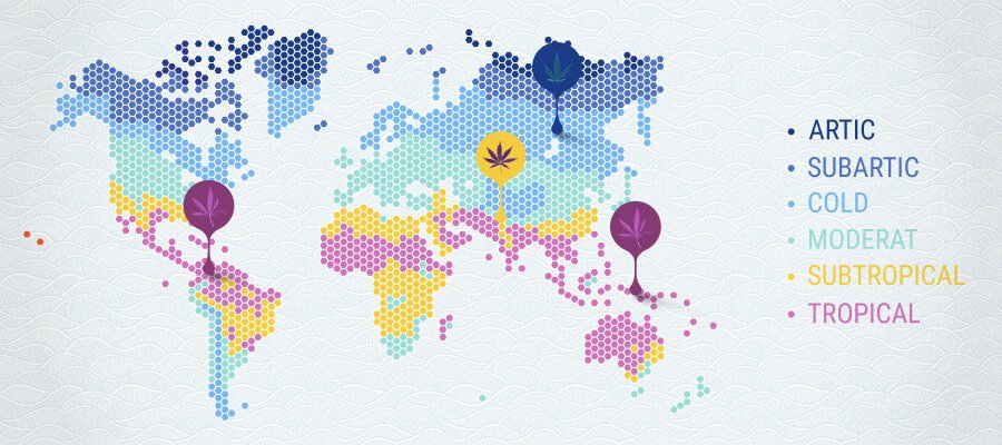 Cannabis Temperature Map