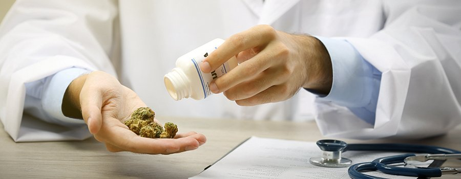 medical marijuana market USA