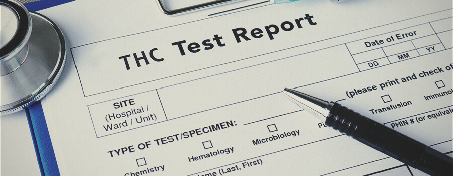 Saliva Drug Testing For THC—What You Need To Know - RQS Blog