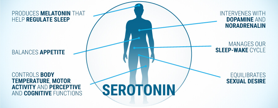 Seratonin Effects On Human Body