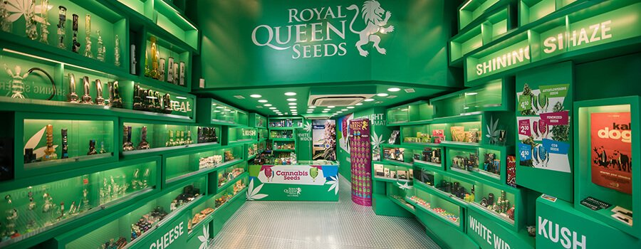 Cannabis Seed Shop Of Royal Queen Seeds In Barcelona