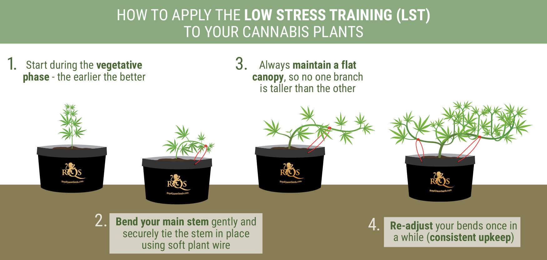 How To Apply The Low Stress Training