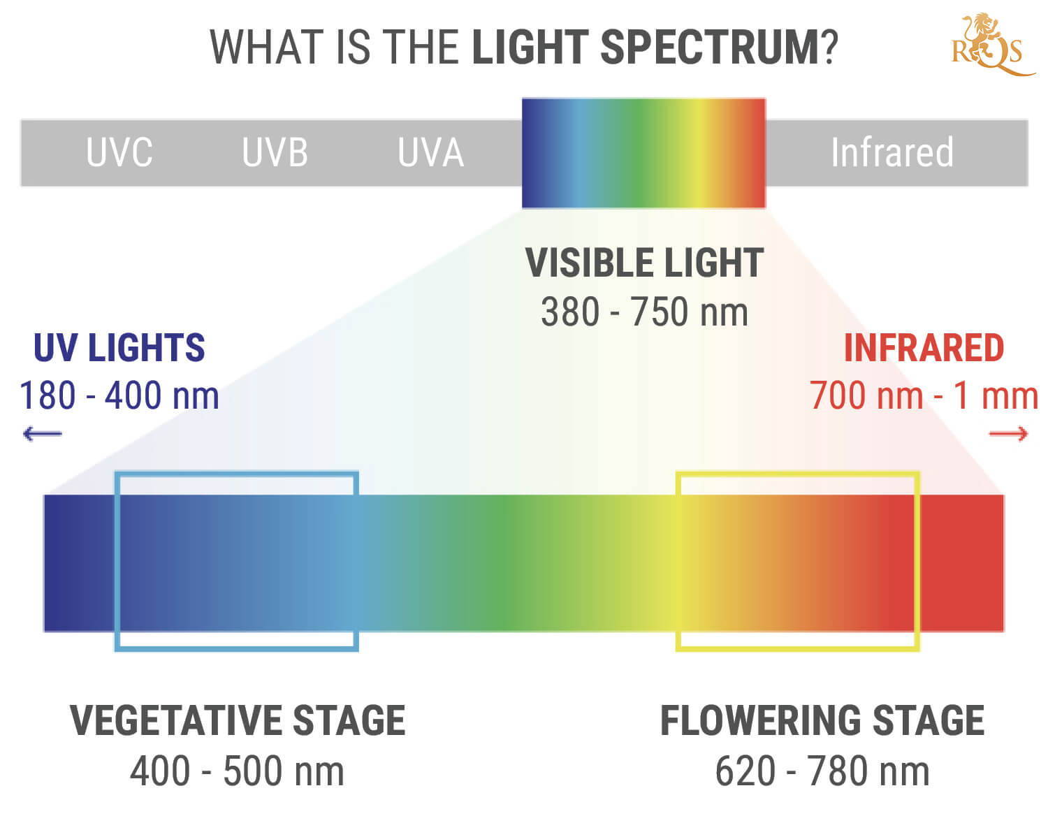 What Is The Light Spectrum?