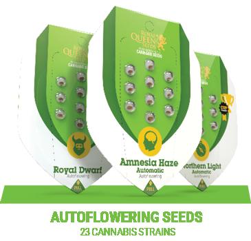 Buy Autoflowering & Feminized Cannabis Seeds - Royal Queen Seeds