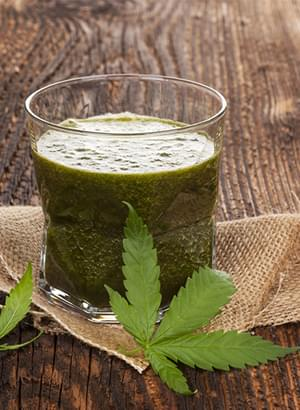 Marijuana Raw Smoothie