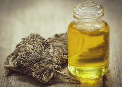 infused cannabis oil pesto recipe