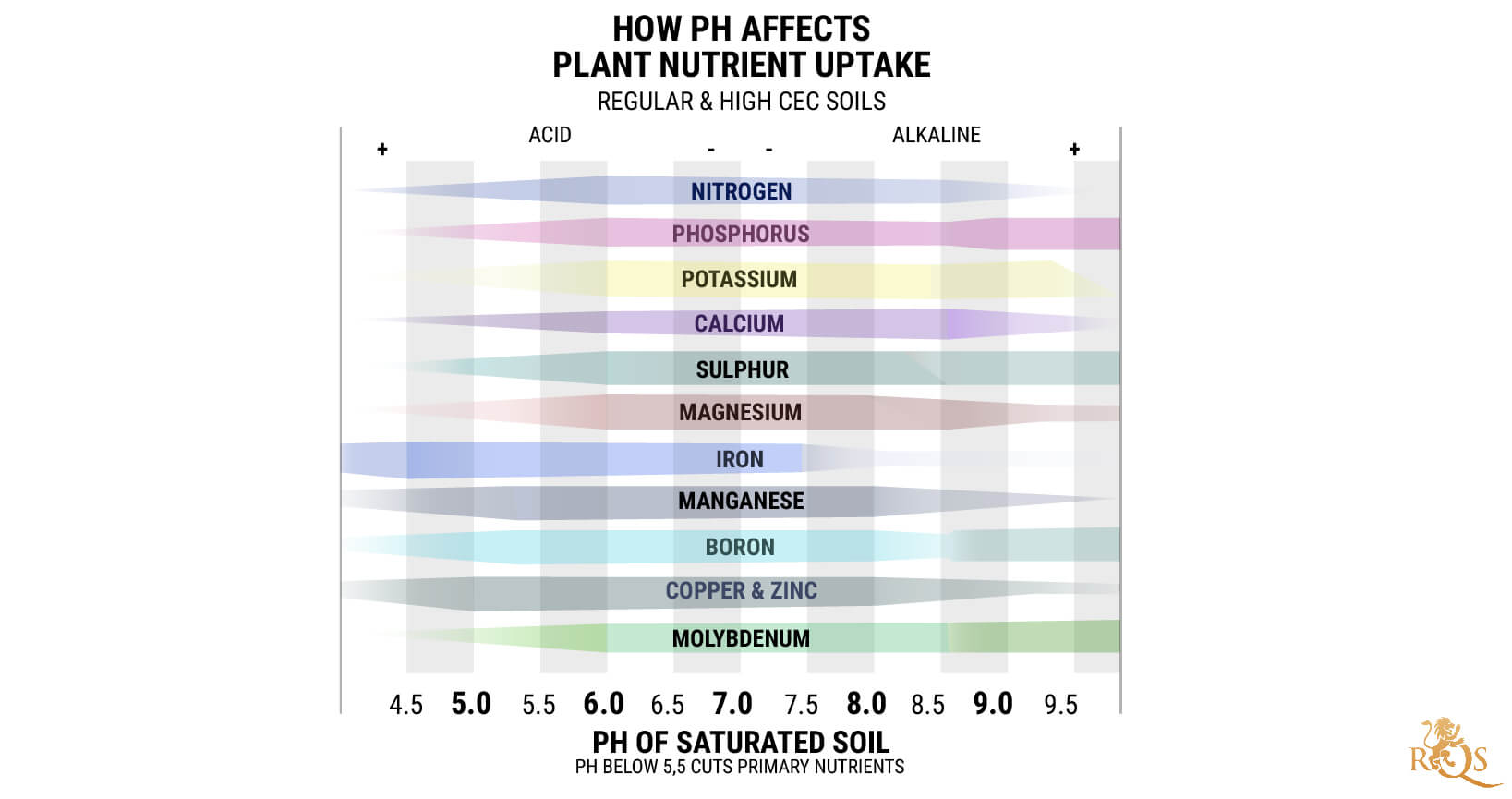 Understanding Ph And How It Affects Cannabis Plants Rqs Blog