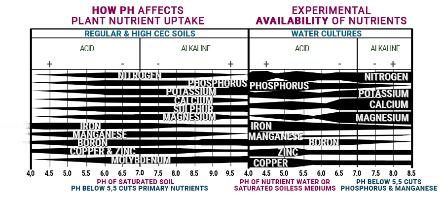 PH graphic cannabis nutrients