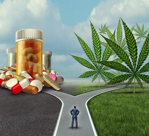 migraine cannabis pill headache treatment