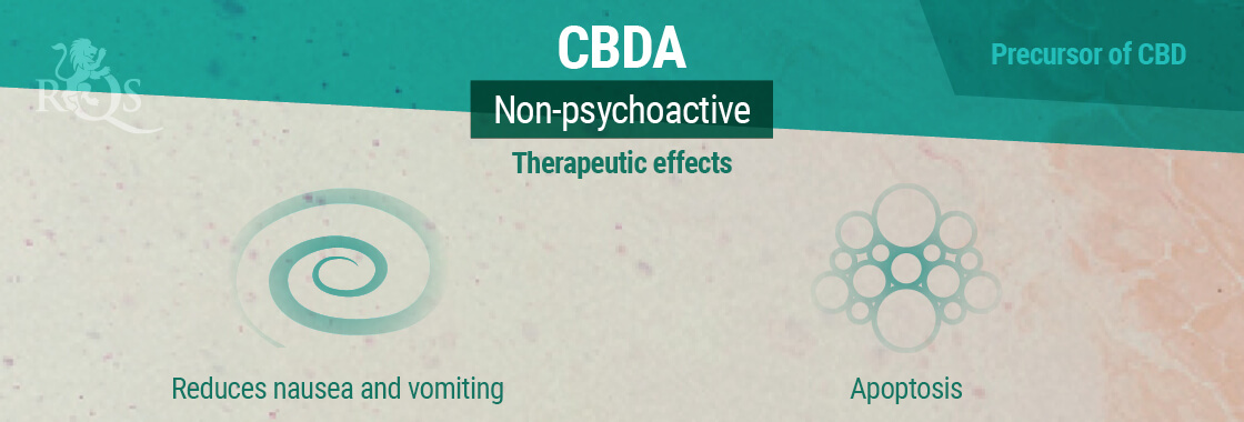 CBDA Therapeutic Effects