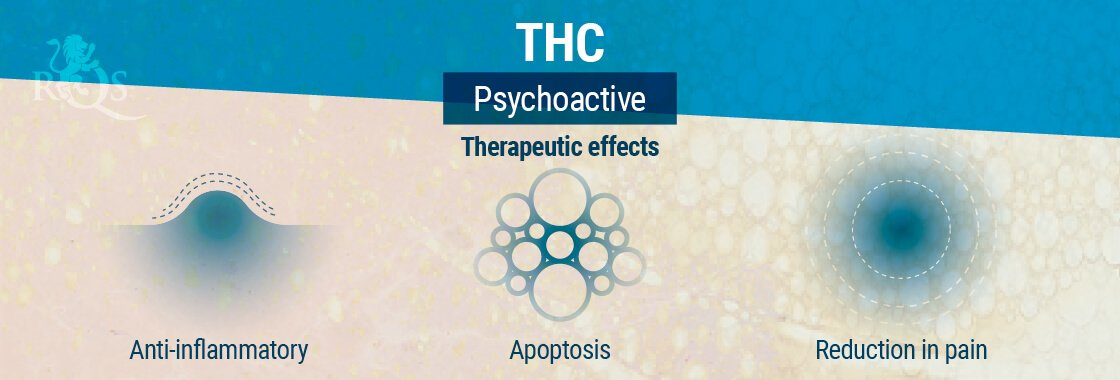 THC Therapeutic Effects