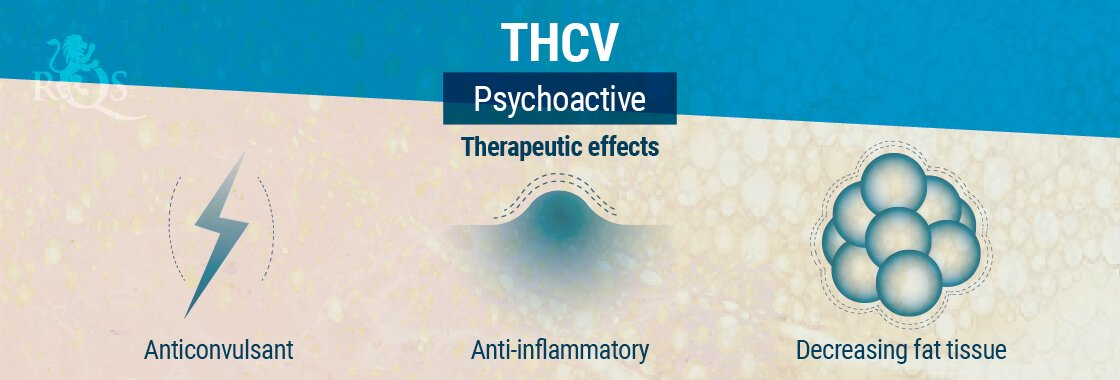 THCV Therapeutic Effects
