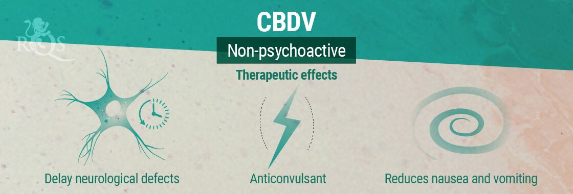 CBDV Therapeutic Effects