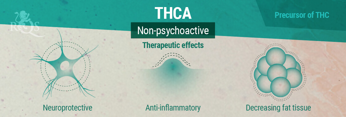THCA Therapeutic Effects