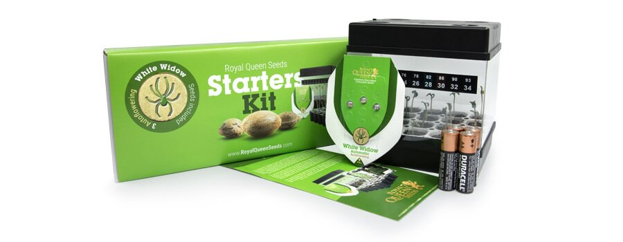 Starter Kit Autoflowering Royal Queen Seeds