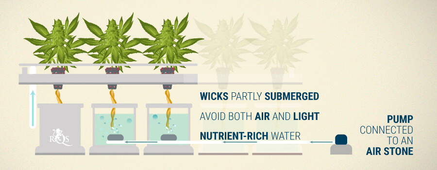 Hydroponic Wick Systems