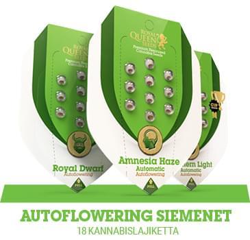 autoflowering-kannabiksen-siemenet