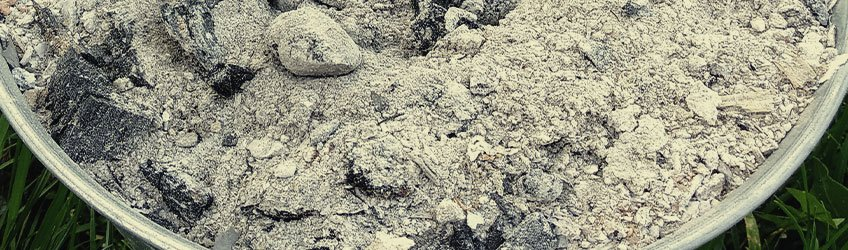 PREVENT PESTS: WOOD ASH BLEND