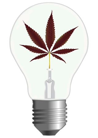 Cannabis Save Energy Light Indoors