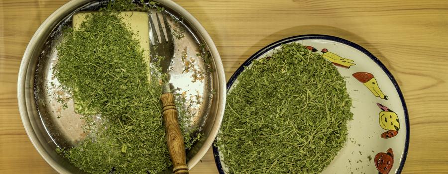 cannabutter recipe cannabis tea