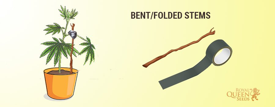Fix Bent Stems